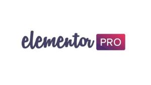elementor-pro-page-builder-plugin